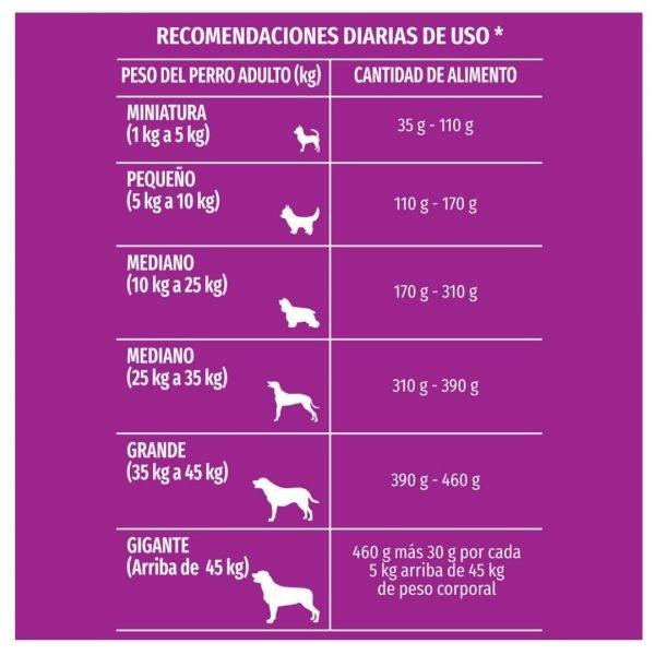 PURINA DOG CHOW PERRO SENIOR LONGEVIDAD recomendacion