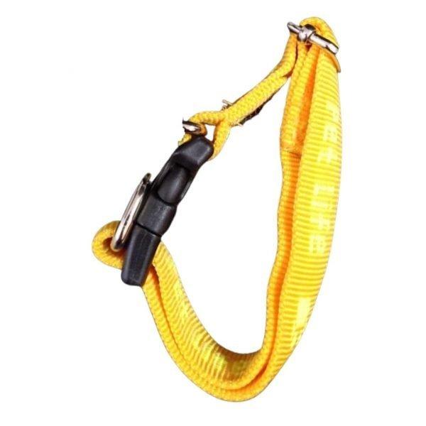 collar de nylon