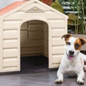 casa para perro pequena imagen 2